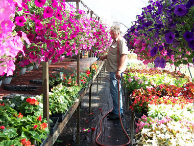 Locally Grown Plants With A Personal Touch
